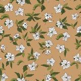 Telha do ornamento das flores do vetor ilustração stock