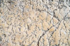 Telha do passeio, a textura do passeio no Temple Mount no Jerusalém Imagem de Stock