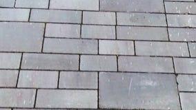 Telha do pavimento do tijolo video estoque