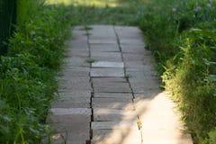 Telha do trajeto do jardim Foto de Stock