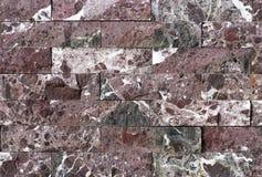 Telha do travertino, cor do material de construção do tijolo Foto de Stock