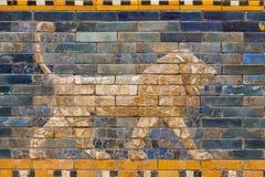 Telha o teste padrão do ` s de Babylon a porta de Ishtar dentro do museu Pergamonmuseum de Pergamon, Berlim, Alemanha - 6 de feve Imagens de Stock Royalty Free