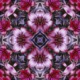 Telha roxa da flor imagem de stock