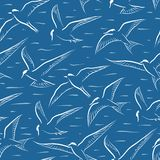 Telha sem emenda da andorinha-do-mar do voo ilustração do vetor
