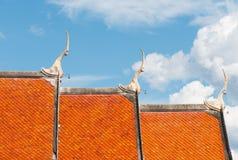Telhado alaranjado foto de stock royalty free