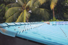 Telhado azul Fotos de Stock