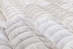Telhado branco da barraca de lona Imagem de Stock