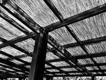 Telhado cobrido com sapê em preto e branco Fotografia de Stock Royalty Free