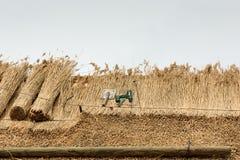 Telhado cobrido com sapê com palha e ferramentas Fotografia de Stock Royalty Free