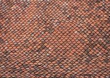 Telhado com telhas velhas Fotografia de Stock Royalty Free