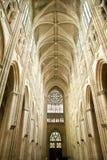 Telhado da catedral das excursões Foto de Stock Royalty Free