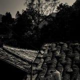 Telhado da construção chinesa antiga Foto de Stock