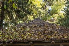Telhado de madeira coberto com as folhas foto de stock royalty free