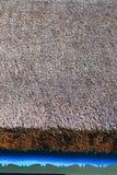Telhado de Reed na casa tradicional Imagens de Stock