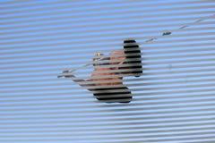 Telhado de vidro arrebatador do homem foto de stock royalty free