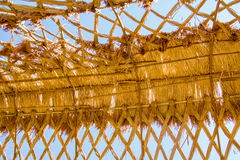 Telhado do arroz Fotografia de Stock