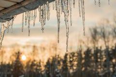 Telhado do céu do sol do inverno dos sincelos Foto de Stock Royalty Free