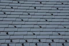 Telhado do metal com protetores da neve - ascendente próximo Fotos de Stock