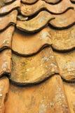 Telhado do Pantile Foto de Stock