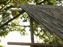 Telhado do vetiver Foto de Stock