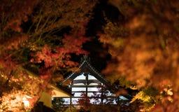 Telhado japonês no outono na noite Fotografia de Stock