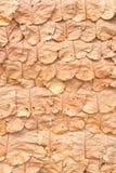Telhado que cobre com sapê usando as folhas da floresta Imagem de Stock