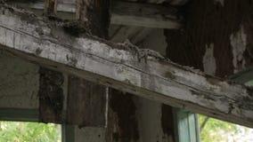 Telhado quebrado da casa de madeira abandonada destruída velha na vila de Bielorrússia vídeos de arquivo