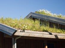 Telhado tradicional da grama Foto de Stock
