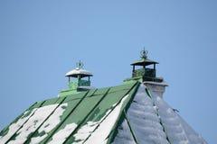 Telhado verde da lata com duas tubulações Imagens de Stock