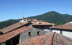 Telhados da terracota Imagem de Stock