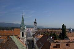 Telhados da vila Imagem de Stock Royalty Free