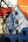 Telhados de Eestonian Fotos de Stock Royalty Free