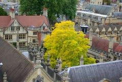 Telhados de Oxford Imagens de Stock