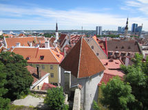 Telhados de Tallinn Fotografia de Stock Royalty Free
