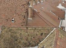 Telhados de telha Fotografia de Stock Royalty Free