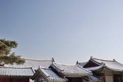 Telhados e céu telhados Foto de Stock Royalty Free