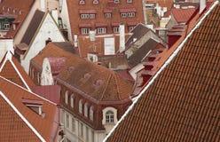 Telhados velhos de Tallin Fotos de Stock Royalty Free