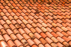 Telhas alaranjadas do telhado Fundo italiano, Trieste Imagem de Stock