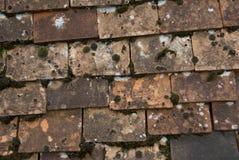 Telhas da argila com musgo e descoloração. Fotografia de Stock
