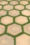 Telhas da paisagem Foto de Stock
