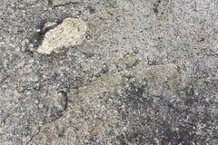 Telhas da superfície áspera Fotografia de Stock