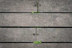 Telhas de assoalho de madeira e gramas verdes imagem de stock royalty free