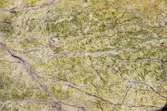 Telhas de mármore do interior do projeto 3d do revestimento Fotos de Stock Royalty Free