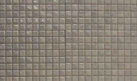 Telhas de mosaico da pérola Fotografia de Stock Royalty Free