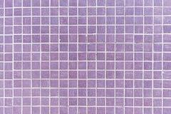 Telhas de mosaico roxas Imagens de Stock