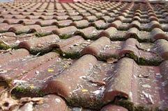 Telhas de telhado sujas que exigem a limpeza Imagem de Stock