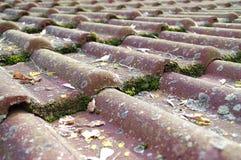 Telhas de telhado sujas que exigem a limpeza Foto de Stock Royalty Free