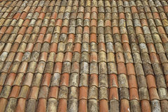Telhas de telhado velhas Imagem de Stock