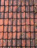 Telhas de telhado vermelhas velhas Imagens de Stock Royalty Free