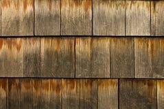 Telhas do cedro Imagem de Stock